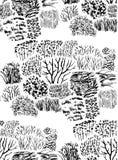 Grass pattern Stock Image