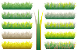 Grass patterns. Set of grass patterns in different colors (Vector Stock Photography