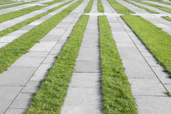Grass pavement strips Royalty Free Stock Photo