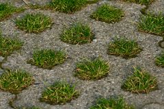 Grass paving in parking lot Royalty Free Stock Photography