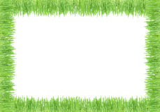 grass pcture frame Stock Images