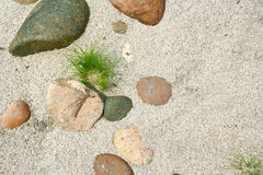 Grass on pebble and sand background Stock Photos