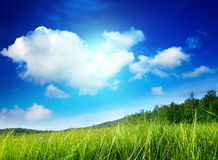 Grass and perfect sky Royalty Free Stock Photography
