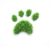 Grass pet paws. Grass patches shaped  like pet paw prints Royalty Free Stock Image