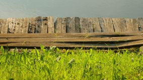 Grass and pier at a lakeside. Green grass on the lakeside, panning camera stock footage