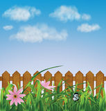 Grass with pink flowers, leaf, fence Royalty Free Stock Photography