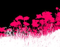 Grass with pink poppy flowers.Vector vector illustration