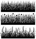 Grass Plant Flower Silhouette. A set of grass, flower, weed, and wheat on a field Royalty Free Stock Photography