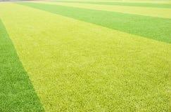 Grass playground. Green grass playground for sports Stock Photo