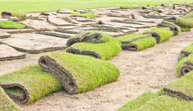 Grass-plot for New Lawn. Stock Photo