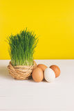 Grass pot with chicken eggs on white board and yellow background. Selective focus, toned image, film effect. Grass pot with eggs on white board and yellow Royalty Free Stock Image
