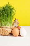 Grass pot with chicken eggs on white board and yellow background. Selective focus, toned image. Grass pot with eggs, rabbits on white board and yellow background Royalty Free Stock Photo