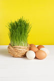 Grass pot with eggs on white board and yellow background. Selective focus, toned image. Film effect Royalty Free Stock Photos