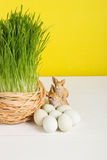 Grass pot with quail eggs on white board and yellow background. Selective focus, toned image, film effect. Grass pot with quail eggs, rabbits on white board and stock photography