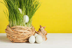 Grass pot with quail eggs on white board and yellow background. Selective focus, toned image. Grass pot with quail eggs, rabbits on white board and yellow Stock Image
