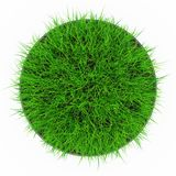 Grass pot top view Stock Images