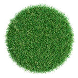 Grass pot top view Stock Photo