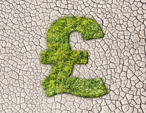 Grass pound sign on cracked earth background Stock Photography