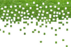 Grass puzzle Royalty Free Stock Photos