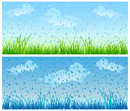 Grass and rain. Landscape with fresh green grass and rain,  illustration Royalty Free Stock Photos