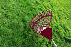 Grass and Rake. Red poly rake tines on clean green grass background Royalty Free Stock Photography