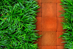 Grass and red brick Royalty Free Stock Photos
