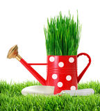 Grass in red polka dot watering can and shovel in green grass Stock Images