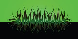 Grass reflect green Royalty Free Stock Image