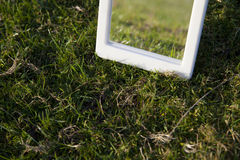 Grass and mirror Royalty Free Stock Photo