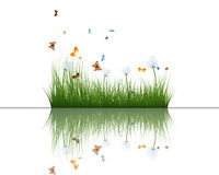 Grass with reflections in water. Summer grass with reflections in water. EPS 10 vector illustration Stock Image