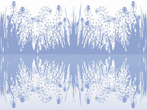 Grass and reflex on the water surface Royalty Free Stock Image