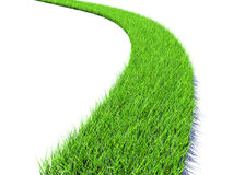 Grass road Royalty Free Stock Photos