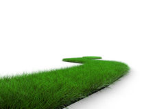 Grass road Stock Image