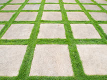Grass road. Square grass road in garden royalty free stock photos