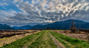 Grass Road Leading to Mountains Stock Photography