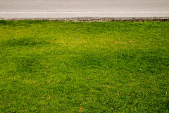 Grass and roads Stock Photography