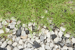 Grass and rock Stock Photography