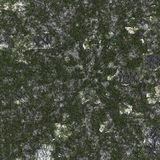 Grass And Rock Texture Royalty Free Stock Photography