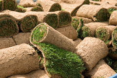 Grass rolls 1. Rolls of natural grass to be planted as grass lawns royalty free stock image