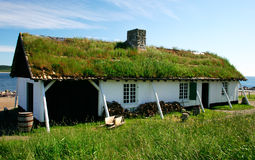 Grass on the Roof. An 18th century fishing camp that was used to process fish Stock Images