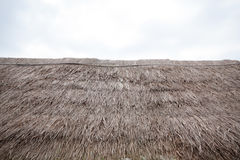 Grass roof Royalty Free Stock Image