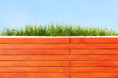 Grass on Roof Garden. Grass on Top of Roof Garden Stock Photo