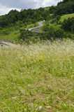 Grass, roof house and winding road Royalty Free Stock Image