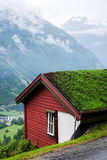 Grass roof Stock Images