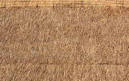 Grass roofs. Royalty Free Stock Photos