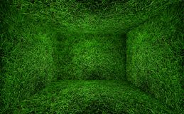 Grass room Stock Images
