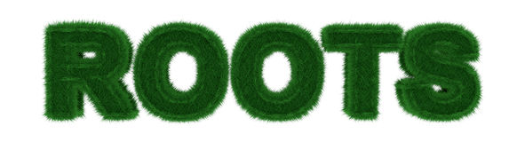 Grass Roots. 3d conceptual image with a play on words and visuals, grass roots Royalty Free Stock Image