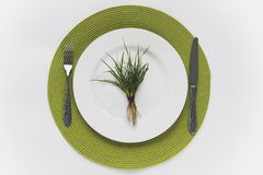 Grass with roots on a white plate, placed on a green root with cutlery next to it. White round plate with grass. Eating grass, salad Stock Images