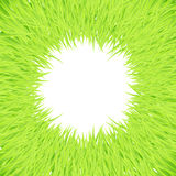 Grass round frame Royalty Free Stock Photo