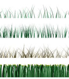 Grass samples Royalty Free Stock Photos